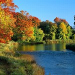 Goldener Herbst – Saisonale Farbwahl